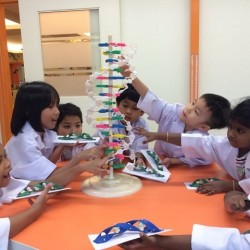 STEaM Education by The Little Makers