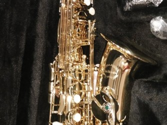 Saxophone Course by Mahogany Musical Instrument & Courses