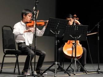 Violin by Subang Music Land