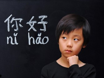 Mandarin Lessons ( Group ) by PS Power Beijing Language World