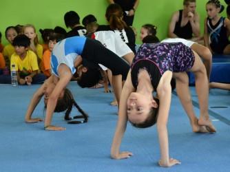 Recreational Gym Classes by Flykidz Gymnastics